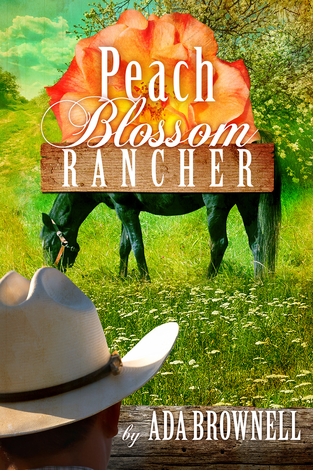 Rancher cover 1