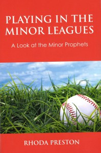 playing in the minor leagues cover